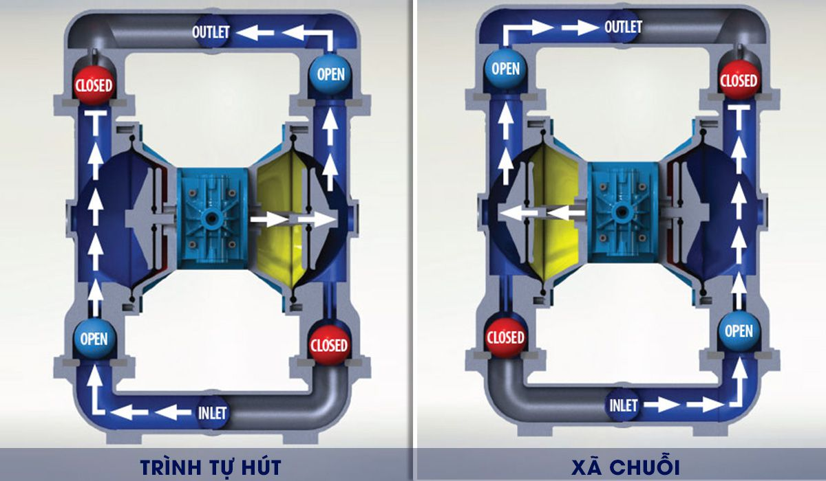 Mặt cắt mô tả hoạt động của bơm màng FTI 1'' FT10A-AA-NNAN-B1