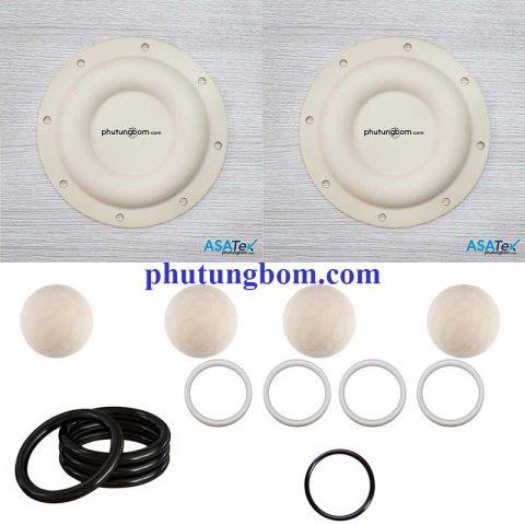 Fluid Kit ARO 66610X P/N 637119-EB-C