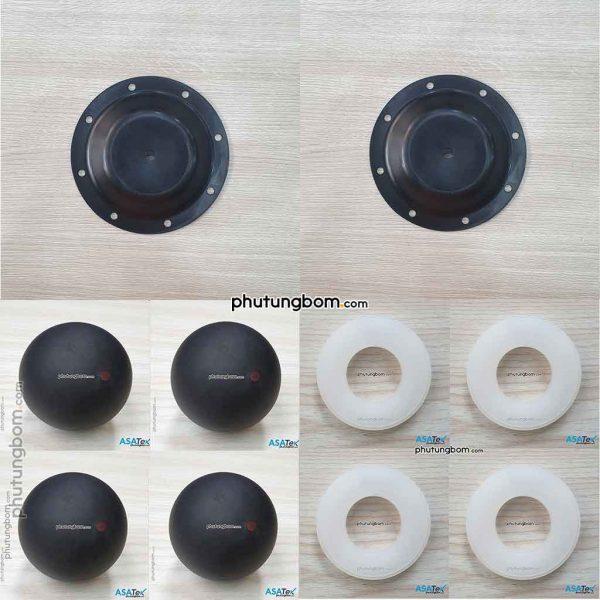 Repair Kit Sandpiper S05 P/N 476-199-365