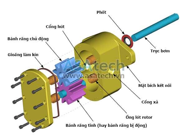 Mô phỏng cấu tạo của máy bơm bánh răng ăn khớp ngoài